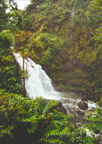 Drive-up waterfall on the Hana Highway