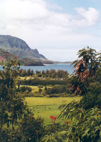 View of the coastal part of the Hanalei Valley
