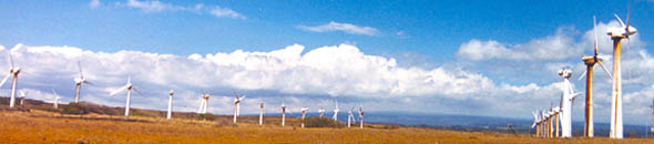 Windmill farm off South Point Road