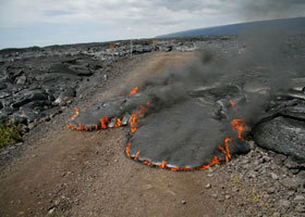 Pahoehoe lava cuts across the old gravel access road