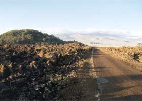 Rough and narrow paved road, passing to right of Koa Kipuka