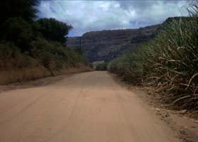 Dirt road through fields to Polihale Beach
