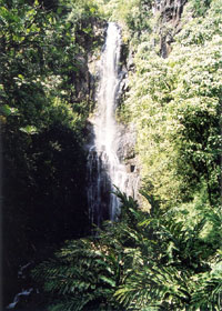 Wailua Falls, from the bridge